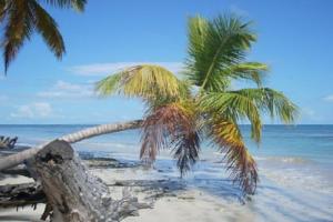 Expatriation en République Dominicaine